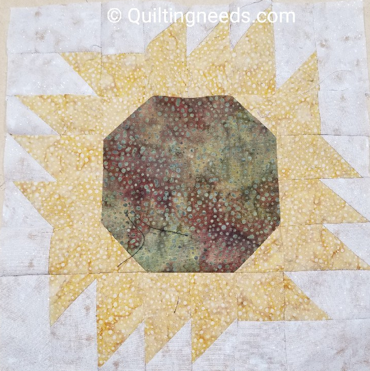 Sewing-Quilting and other nonsense…(some nonsense, somenot)